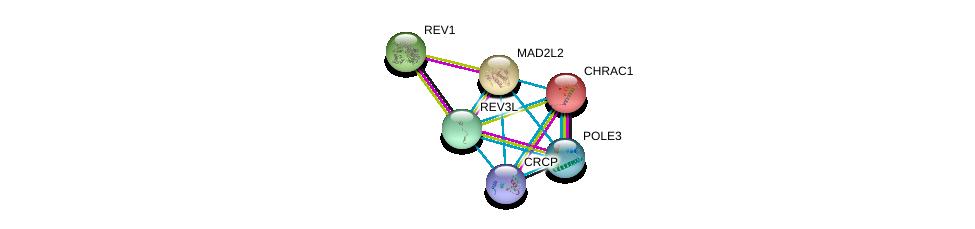 http://string-db.org/version_10/api/image/networkList?limit=0&targetmode=proteins&caller_identity=gene_cards&network_flavor=evidence&identifiers=9606.ENSP00000235310%0d%0a9606.ENSP00000258428%0d%0a9606.ENSP00000351697%0d%0a9606.ENSP00000363284%0d%0a9606.ENSP00000378736%0d%0a9606.ENSP00000220913%0d%0a