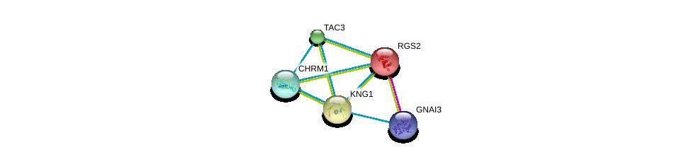 http://string-db.org/version_10/api/image/networkList?limit=0&targetmode=proteins&caller_identity=gene_cards&network_flavor=evidence&identifiers=9606.ENSP00000235382%0d%0a9606.ENSP00000358867%0d%0a9606.ENSP00000358867%0d%0a9606.ENSP00000300108%0d%0a9606.ENSP00000306490%0d%0a9606.ENSP00000265023%0d%0a