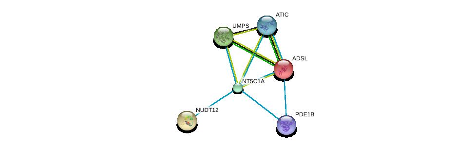 http://string-db.org/version_10/api/image/networkList?limit=0&targetmode=proteins&caller_identity=gene_cards&network_flavor=evidence&identifiers=9606.ENSP00000235628%0d%0a9606.ENSP00000216194%0d%0a9606.ENSP00000230792%0d%0a9606.ENSP00000232607%0d%0a9606.ENSP00000236959%0d%0a9606.ENSP00000243052%0d%0a