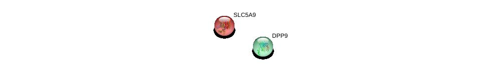 http://string-db.org/version_10/api/image/networkList?limit=0&targetmode=proteins&caller_identity=gene_cards&network_flavor=evidence&identifiers=9606.ENSP00000236495%0d%0a9606.ENSP00000262960%0d%0a