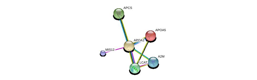 http://string-db.org/version_10/api/image/networkList?limit=0&targetmode=proteins&caller_identity=gene_cards&network_flavor=evidence&identifiers=9606.ENSP00000236850%0d%0a9606.ENSP00000264005%0d%0a9606.ENSP00000370557%0d%0a9606.ENSP00000255040%0d%0a9606.ENSP00000323929%0d%0a9606.ENSP00000227665%0d%0a