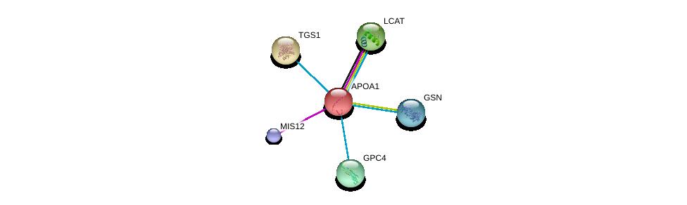 http://string-db.org/version_10/api/image/networkList?limit=0&targetmode=proteins&caller_identity=gene_cards&network_flavor=evidence&identifiers=9606.ENSP00000236850%0d%0a9606.ENSP00000264005%0d%0a9606.ENSP00000370557%0d%0a9606.ENSP00000260129%0d%0a9606.ENSP00000362924%0d%0a9606.ENSP00000359864%0d%0a