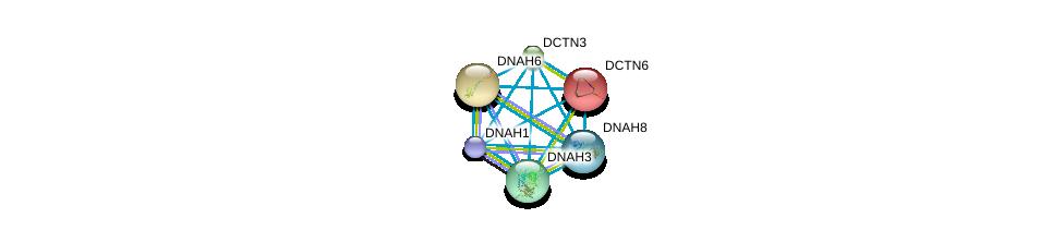 http://string-db.org/version_10/api/image/networkList?limit=0&targetmode=proteins&caller_identity=gene_cards&network_flavor=evidence&identifiers=9606.ENSP00000237449%0d%0a9606.ENSP00000259632%0d%0a9606.ENSP00000401514%0d%0a9606.ENSP00000221114%0d%0a9606.ENSP00000261383%0d%0a9606.ENSP00000333363%0d%0a