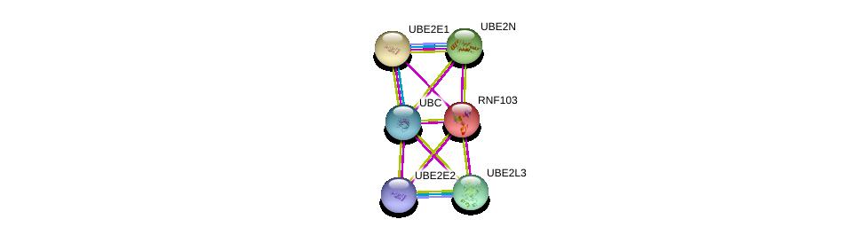 http://string-db.org/version_10/api/image/networkList?limit=0&targetmode=proteins&caller_identity=gene_cards&network_flavor=evidence&identifiers=9606.ENSP00000237455%0d%0a9606.ENSP00000316176%0d%0a9606.ENSP00000379931%0d%0a9606.ENSP00000344818%0d%0a9606.ENSP00000344259%0d%0a9606.ENSP00000303709%0d%0a