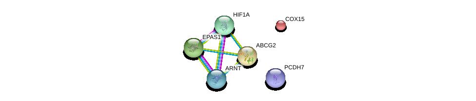 http://string-db.org/version_10/api/image/networkList?limit=0&targetmode=proteins&caller_identity=gene_cards&network_flavor=evidence&identifiers=9606.ENSP00000237612%0d%0a9606.ENSP00000263734%0d%0a9606.ENSP00000351407%0d%0a9606.ENSP00000338018%0d%0a9606.ENSP00000441802%0d%0a9606.ENSP00000016171%0d%0a