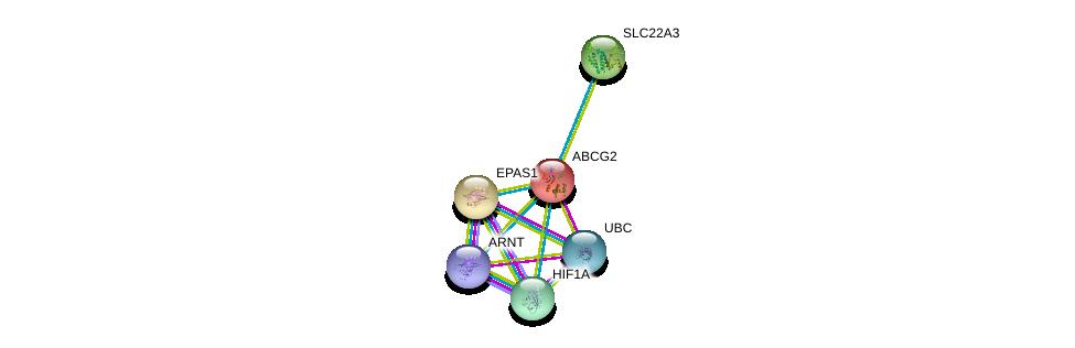 http://string-db.org/version_10/api/image/networkList?limit=0&targetmode=proteins&caller_identity=gene_cards&network_flavor=evidence&identifiers=9606.ENSP00000237612%0d%0a9606.ENSP00000275300%0d%0a9606.ENSP00000351407%0d%0a9606.ENSP00000263734%0d%0a9606.ENSP00000338018%0d%0a9606.ENSP00000344818%0d%0a