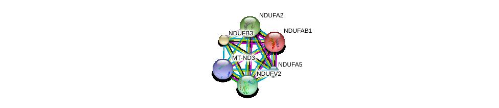 http://string-db.org/version_10/api/image/networkList?limit=0&targetmode=proteins&caller_identity=gene_cards&network_flavor=evidence&identifiers=9606.ENSP00000237889%0d%0a9606.ENSP00000252102%0d%0a9606.ENSP00000007516%0d%0a9606.ENSP00000327268%0d%0a9606.ENSP00000355206%0d%0a9606.ENSP00000347988%0d%0a