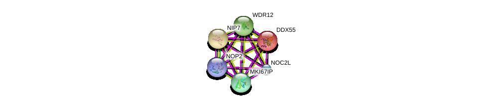 http://string-db.org/version_10/api/image/networkList?limit=0&targetmode=proteins&caller_identity=gene_cards&network_flavor=evidence&identifiers=9606.ENSP00000238146%0d%0a9606.ENSP00000285814%0d%0a9606.ENSP00000382392%0d%0a9606.ENSP00000254940%0d%0a9606.ENSP00000261015%0d%0a9606.ENSP00000317992%0d%0a