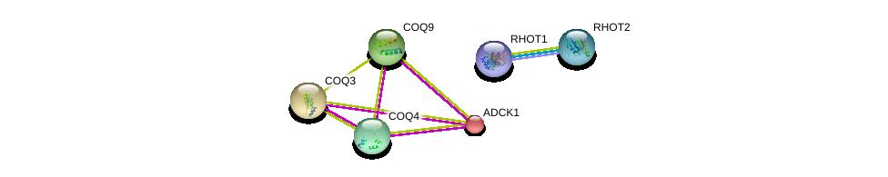 http://string-db.org/version_10/api/image/networkList?limit=0&targetmode=proteins&caller_identity=gene_cards&network_flavor=evidence&identifiers=9606.ENSP00000238561%0d%0a9606.ENSP00000351132%0d%0a9606.ENSP00000321971%0d%0a9606.ENSP00000262507%0d%0a9606.ENSP00000300452%0d%0a9606.ENSP00000254759%0d%0a