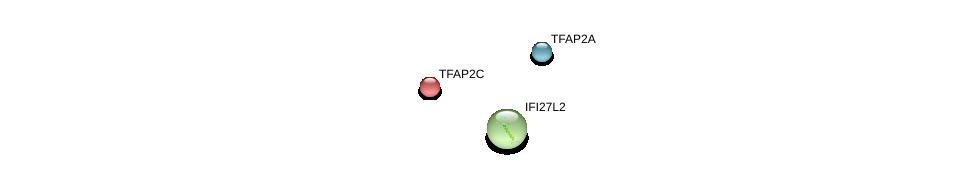 http://string-db.org/version_10/api/image/networkList?limit=0&targetmode=proteins&caller_identity=gene_cards&network_flavor=evidence&identifiers=9606.ENSP00000238609%0d%0a9606.ENSP00000201031%0d%0a9606.ENSP00000368924%0d%0a