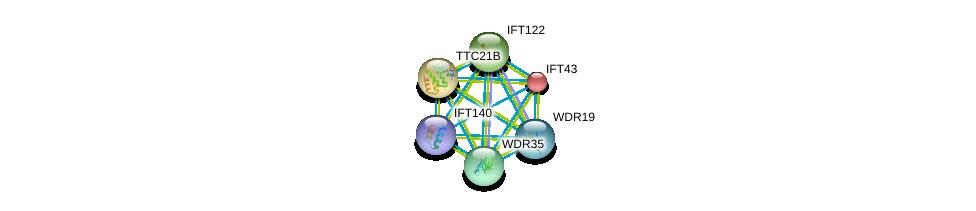 http://string-db.org/version_10/api/image/networkList?limit=0&targetmode=proteins&caller_identity=gene_cards&network_flavor=evidence&identifiers=9606.ENSP00000238628%0d%0a9606.ENSP00000243344%0d%0a9606.ENSP00000296266%0d%0a9606.ENSP00000314444%0d%0a9606.ENSP00000382717%0d%0a9606.ENSP00000406012%0d%0a