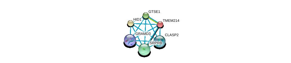 http://string-db.org/version_10/api/image/networkList?limit=0&targetmode=proteins&caller_identity=gene_cards&network_flavor=evidence&identifiers=9606.ENSP00000238788%0d%0a9606.ENSP00000426120%0d%0a9606.ENSP00000419974%0d%0a9606.ENSP00000418401%0d%0a9606.ENSP00000415430%0d%0a9606.ENSP00000413520%0d%0a