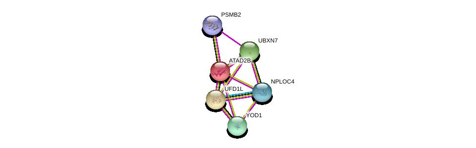 http://string-db.org/version_10/api/image/networkList?limit=0&targetmode=proteins&caller_identity=gene_cards&network_flavor=evidence&identifiers=9606.ENSP00000238789%0d%0a9606.ENSP00000296328%0d%0a9606.ENSP00000263202%0d%0a9606.ENSP00000326813%0d%0a9606.ENSP00000331487%0d%0a9606.ENSP00000362334%0d%0a
