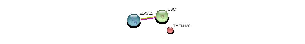 http://string-db.org/version_10/api/image/networkList?limit=0&targetmode=proteins&caller_identity=gene_cards&network_flavor=evidence&identifiers=9606.ENSP00000238936%0d%0a9606.ENSP00000385269%0d%0a9606.ENSP00000344818%0d%0a