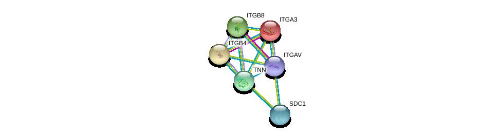 http://string-db.org/version_10/api/image/networkList?limit=0&targetmode=proteins&caller_identity=gene_cards&network_flavor=evidence&identifiers=9606.ENSP00000239462%0d%0a9606.ENSP00000007722%0d%0a9606.ENSP00000200181%0d%0a9606.ENSP00000222573%0d%0a9606.ENSP00000254351%0d%0a9606.ENSP00000261023%0d%0a
