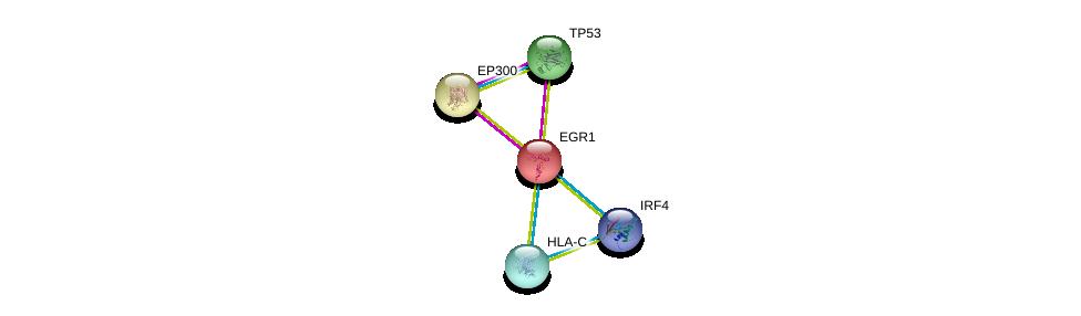 http://string-db.org/version_10/api/image/networkList?limit=0&targetmode=proteins&caller_identity=gene_cards&network_flavor=evidence&identifiers=9606.ENSP00000239938%0d%0a9606.ENSP00000269305%0d%0a9606.ENSP00000263253%0d%0a9606.ENSP00000263253%0d%0a9606.ENSP00000370343%0d%0a9606.ENSP00000365402%0d%0a