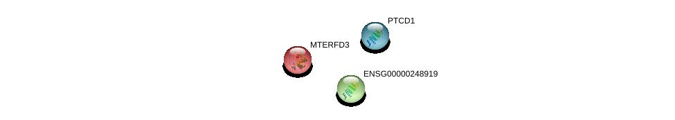 http://string-db.org/version_10/api/image/networkList?limit=0&targetmode=proteins&caller_identity=gene_cards&network_flavor=evidence&identifiers=9606.ENSP00000240050%0d%0a9606.ENSP00000400168%0d%0a9606.ENSP00000450995%0d%0a