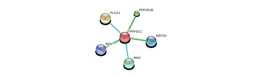 http://string-db.org/version_10/api/image/networkList?limit=0&targetmode=proteins&caller_identity=gene_cards&network_flavor=evidence&identifiers=9606.ENSP00000240139%0d%0a9606.ENSP00000244007%0d%0a9606.ENSP00000254079%0d%0a9606.ENSP00000267012%0d%0a9606.ENSP00000271555%0d%0a9606.ENSP00000309103%0d%0a