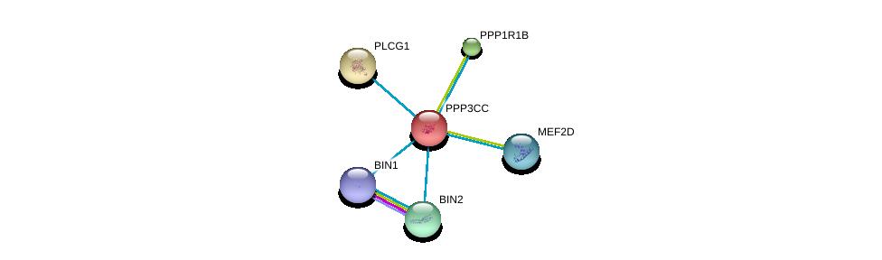 http://string-db.org/version_10/api/image/networkList?limit=0&targetmode=proteins&caller_identity=gene_cards&network_flavor=evidence&identifiers=9606.ENSP00000240139%0d%0a9606.ENSP00000254079%0d%0a9606.ENSP00000244007%0d%0a9606.ENSP00000267012%0d%0a9606.ENSP00000271555%0d%0a9606.ENSP00000316779%0d%0a
