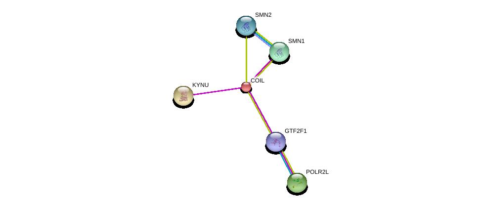 http://string-db.org/version_10/api/image/networkList?limit=0&targetmode=proteins&caller_identity=gene_cards&network_flavor=evidence&identifiers=9606.ENSP00000240316%0d%0a9606.ENSP00000324124%0d%0a9606.ENSP00000264170%0d%0a9606.ENSP00000370119%0d%0a9606.ENSP00000370083%0d%0a9606.ENSP00000377969%0d%0a