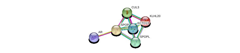 http://string-db.org/version_10/api/image/networkList?limit=0&targetmode=proteins&caller_identity=gene_cards&network_flavor=evidence&identifiers=9606.ENSP00000240327%0d%0a9606.ENSP00000264414%0d%0a9606.ENSP00000363822%0d%0a9606.ENSP00000311202%0d%0a9606.ENSP00000280098%0d%0a9606.ENSP00000209884%0d%0a