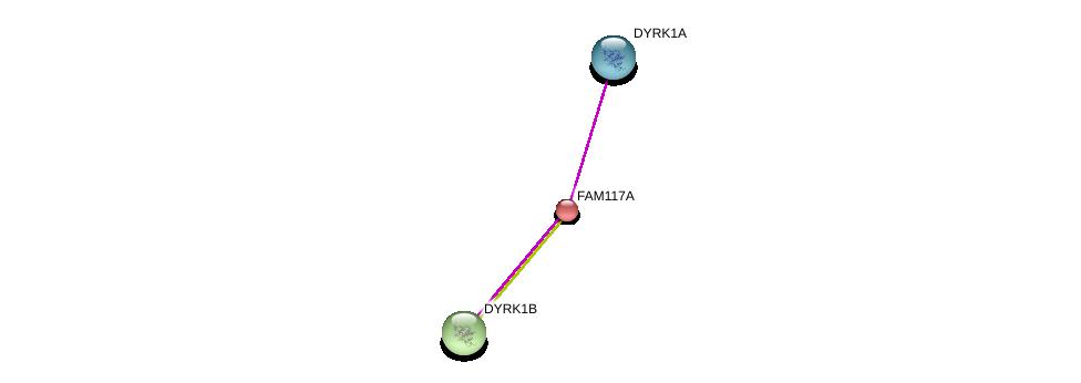 http://string-db.org/version_10/api/image/networkList?limit=0&targetmode=proteins&caller_identity=gene_cards&network_flavor=evidence&identifiers=9606.ENSP00000240364%0d%0a9606.ENSP00000312789%0d%0a9606.ENSP00000381932%0d%0a