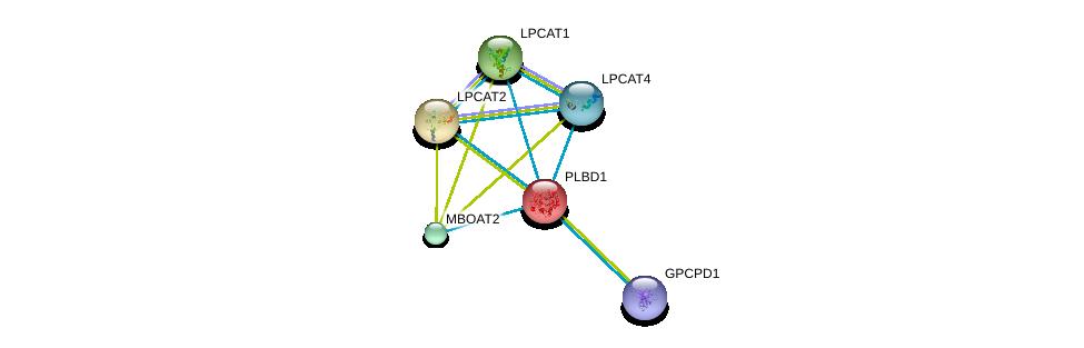 http://string-db.org/version_10/api/image/networkList?limit=0&targetmode=proteins&caller_identity=gene_cards&network_flavor=evidence&identifiers=9606.ENSP00000240617%0d%0a9606.ENSP00000283415%0d%0a9606.ENSP00000317300%0d%0a9606.ENSP00000302177%0d%0a9606.ENSP00000262134%0d%0a9606.ENSP00000368305%0d%0a