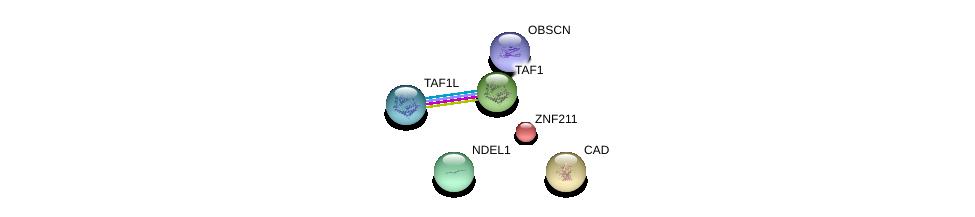 http://string-db.org/version_10/api/image/networkList?limit=0&targetmode=proteins&caller_identity=gene_cards&network_flavor=evidence&identifiers=9606.ENSP00000240731%0d%0a9606.ENSP00000333982%0d%0a9606.ENSP00000264705%0d%0a9606.ENSP00000455507%0d%0a9606.ENSP00000418379%0d%0a9606.ENSP00000276072%0d%0a