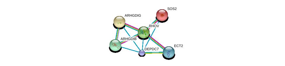 http://string-db.org/version_10/api/image/networkList?limit=0&targetmode=proteins&caller_identity=gene_cards&network_flavor=evidence&identifiers=9606.ENSP00000241051%0d%0a9606.ENSP00000216373%0d%0a9606.ENSP00000219409%0d%0a9606.ENSP00000220507%0d%0a9606.ENSP00000228945%0d%0a9606.ENSP00000232458%0d%0a