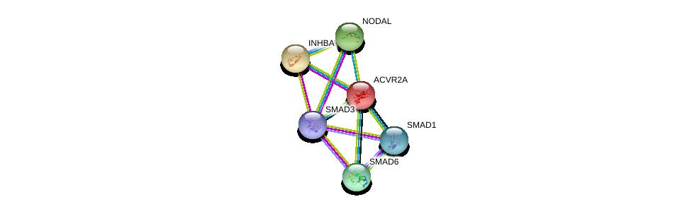 http://string-db.org/version_10/api/image/networkList?limit=0&targetmode=proteins&caller_identity=gene_cards&network_flavor=evidence&identifiers=9606.ENSP00000241416%0d%0a9606.ENSP00000242208%0d%0a9606.ENSP00000287139%0d%0a9606.ENSP00000288840%0d%0a9606.ENSP00000305769%0d%0a9606.ENSP00000332973%0d%0a