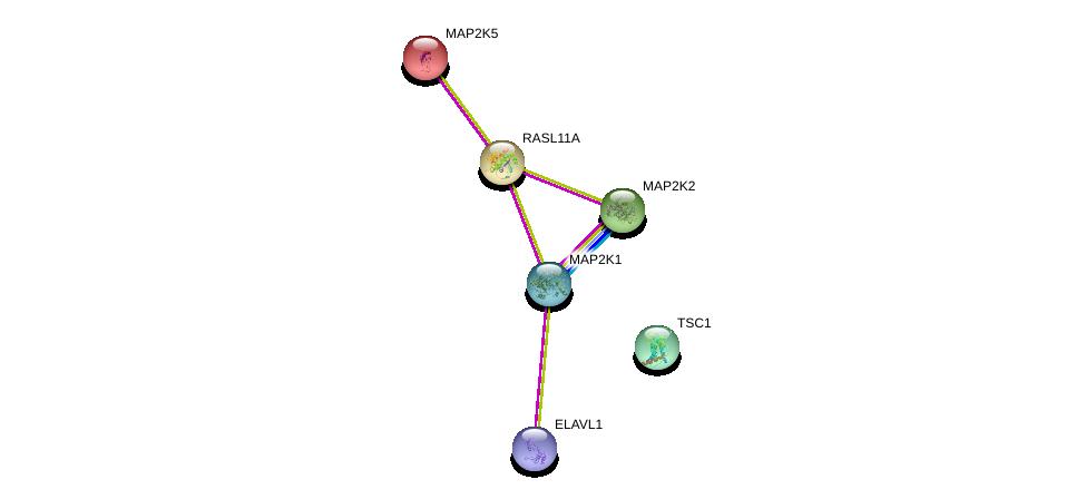 http://string-db.org/version_10/api/image/networkList?limit=0&targetmode=proteins&caller_identity=gene_cards&network_flavor=evidence&identifiers=9606.ENSP00000241463%0d%0a9606.ENSP00000298552%0d%0a9606.ENSP00000385269%0d%0a9606.ENSP00000302486%0d%0a9606.ENSP00000178640%0d%0a9606.ENSP00000262948%0d%0a