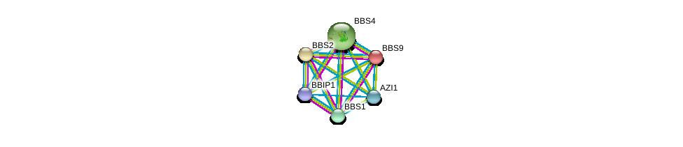 http://string-db.org/version_10/api/image/networkList?limit=0&targetmode=proteins&caller_identity=gene_cards&network_flavor=evidence&identifiers=9606.ENSP00000242067%0d%0a9606.ENSP00000245157%0d%0a9606.ENSP00000393583%0d%0a9606.ENSP00000433157%0d%0a9606.ENSP00000317469%0d%0a9606.ENSP00000268057%0d%0a