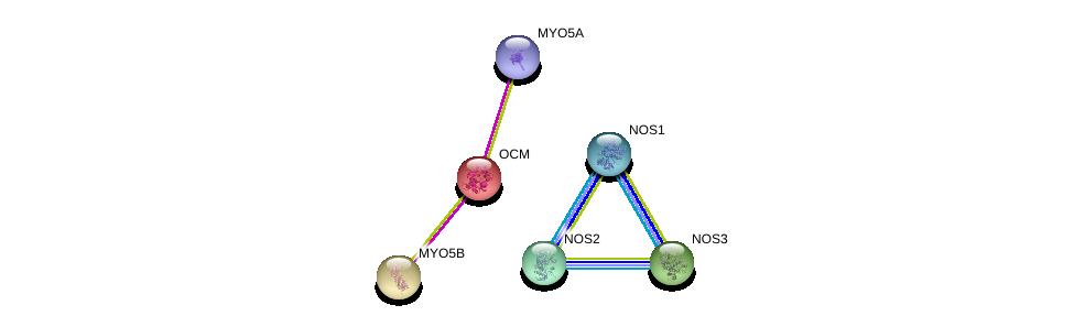 http://string-db.org/version_10/api/image/networkList?limit=0&targetmode=proteins&caller_identity=gene_cards&network_flavor=evidence&identifiers=9606.ENSP00000242104%0d%0a9606.ENSP00000297494%0d%0a9606.ENSP00000337459%0d%0a9606.ENSP00000327251%0d%0a9606.ENSP00000382177%0d%0a9606.ENSP00000285039%0d%0a