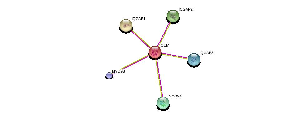 http://string-db.org/version_10/api/image/networkList?limit=0&targetmode=proteins&caller_identity=gene_cards&network_flavor=evidence&identifiers=9606.ENSP00000242104%0d%0a9606.ENSP00000348349%0d%0a9606.ENSP00000380444%0d%0a9606.ENSP00000268182%0d%0a9606.ENSP00000274364%0d%0a9606.ENSP00000354451%0d%0a