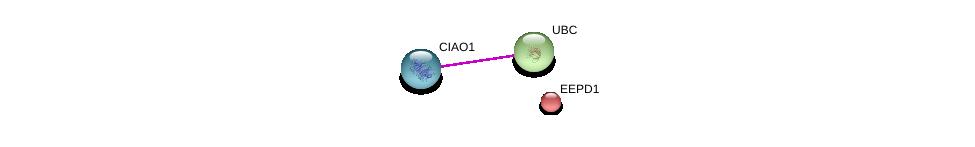 http://string-db.org/version_10/api/image/networkList?limit=0&targetmode=proteins&caller_identity=gene_cards&network_flavor=evidence&identifiers=9606.ENSP00000242108%0d%0a9606.ENSP00000418287%0d%0a9606.ENSP00000344818%0d%0a