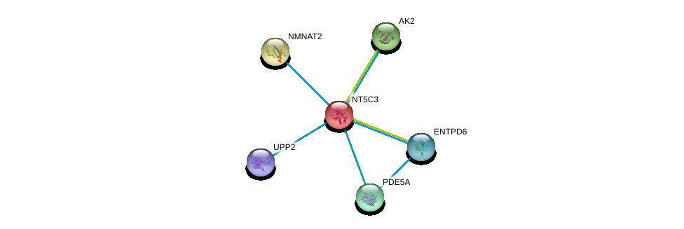 http://string-db.org/version_10/api/image/networkList?limit=0&targetmode=proteins&caller_identity=gene_cards&network_flavor=evidence&identifiers=9606.ENSP00000242210%0d%0a9606.ENSP00000387230%0d%0a9606.ENSP00000346921%0d%0a9606.ENSP00000365840%0d%0a9606.ENSP00000347046%0d%0a9606.ENSP00000287713%0d%0a