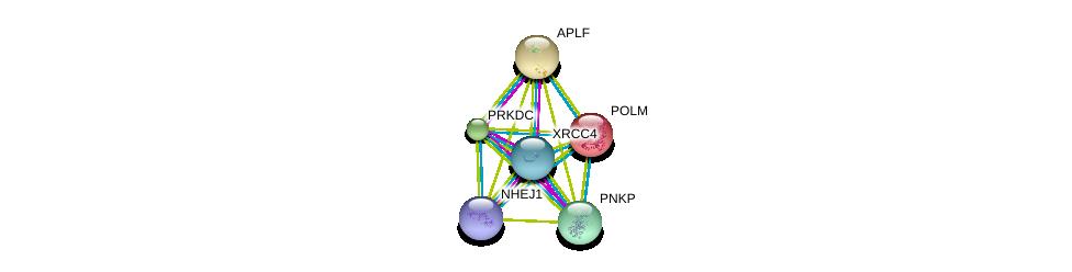 http://string-db.org/version_10/api/image/networkList?limit=0&targetmode=proteins&caller_identity=gene_cards&network_flavor=evidence&identifiers=9606.ENSP00000242248%0d%0a9606.ENSP00000307004%0d%0a9606.ENSP00000313420%0d%0a9606.ENSP00000323511%0d%0a9606.ENSP00000342011%0d%0a9606.ENSP00000349313%0d%0a
