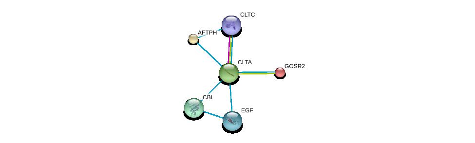 http://string-db.org/version_10/api/image/networkList?limit=0&targetmode=proteins&caller_identity=gene_cards&network_flavor=evidence&identifiers=9606.ENSP00000242285%0d%0a9606.ENSP00000269122%0d%0a9606.ENSP00000265171%0d%0a9606.ENSP00000264033%0d%0a9606.ENSP00000238855%0d%0a9606.ENSP00000225567%0d%0a
