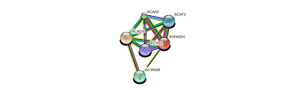 http://string-db.org/version_10/api/image/networkList?limit=0&targetmode=proteins&caller_identity=gene_cards&network_flavor=evidence&identifiers=9606.ENSP00000242592%0d%0a9606.ENSP00000285093%0d%0a9606.ENSP00000231887%0d%0a9606.ENSP00000327453%0d%0a9606.ENSP00000356015%0d%0a9606.ENSP00000357535%0d%0a