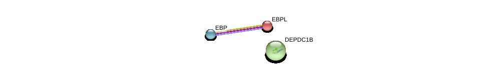 http://string-db.org/version_10/api/image/networkList?limit=0&targetmode=proteins&caller_identity=gene_cards&network_flavor=evidence&identifiers=9606.ENSP00000242827%0d%0a9606.ENSP00000417052%0d%0a9606.ENSP00000265036%0d%0a