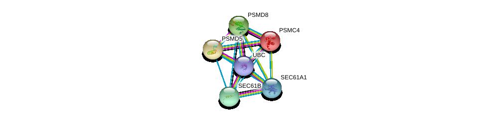 http://string-db.org/version_10/api/image/networkList?limit=0&targetmode=proteins&caller_identity=gene_cards&network_flavor=evidence&identifiers=9606.ENSP00000243253%0d%0a9606.ENSP00000344818%0d%0a9606.ENSP00000223641%0d%0a9606.ENSP00000157812%0d%0a9606.ENSP00000210313%0d%0a9606.ENSP00000215071%0d%0a