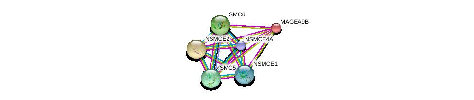 http://string-db.org/version_10/api/image/networkList?limit=0&targetmode=proteins&caller_identity=gene_cards&network_flavor=evidence&identifiers=9606.ENSP00000243314%0d%0a9606.ENSP00000287437%0d%0a9606.ENSP00000323439%0d%0a9606.ENSP00000354957%0d%0a9606.ENSP00000355077%0d%0a9606.ENSP00000358019%0d%0a