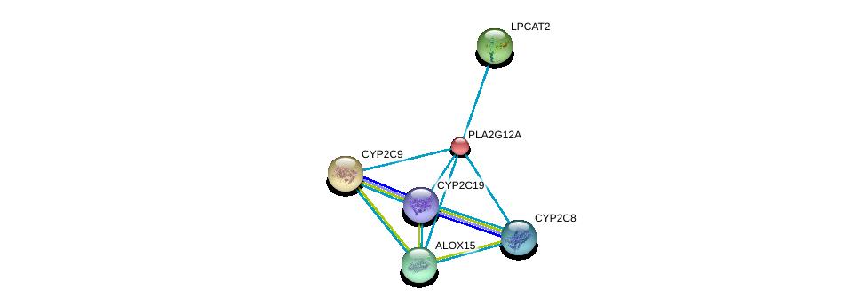 http://string-db.org/version_10/api/image/networkList?limit=0&targetmode=proteins&caller_identity=gene_cards&network_flavor=evidence&identifiers=9606.ENSP00000243501%0d%0a9606.ENSP00000293761%0d%0a9606.ENSP00000360372%0d%0a9606.ENSP00000262134%0d%0a9606.ENSP00000260682%0d%0a9606.ENSP00000360317%0d%0a