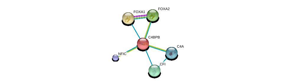 http://string-db.org/version_10/api/image/networkList?limit=0&targetmode=proteins&caller_identity=gene_cards&network_flavor=evidence&identifiers=9606.ENSP00000243611%0d%0a9606.ENSP00000250448%0d%0a9606.ENSP00000465655%0d%0a9606.ENSP00000315955%0d%0a9606.ENSP00000396688%0d%0a9606.ENSP00000378130%0d%0a