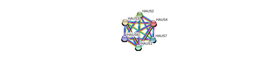 http://string-db.org/version_10/api/image/networkList?limit=0&targetmode=proteins&caller_identity=gene_cards&network_flavor=evidence&identifiers=9606.ENSP00000243706%0d%0a9606.ENSP00000260372%0d%0a9606.ENSP00000369871%0d%0a9606.ENSP00000206474%0d%0a9606.ENSP00000282058%0d%0a9606.ENSP00000359239%0d%0a