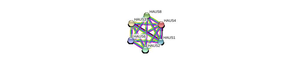http://string-db.org/version_10/api/image/networkList?limit=0&targetmode=proteins&caller_identity=gene_cards&network_flavor=evidence&identifiers=9606.ENSP00000243706%0d%0a9606.ENSP00000260372%0d%0a9606.ENSP00000369871%0d%0a9606.ENSP00000282058%0d%0a9606.ENSP00000206474%0d%0a9606.ENSP00000253669%0d%0a