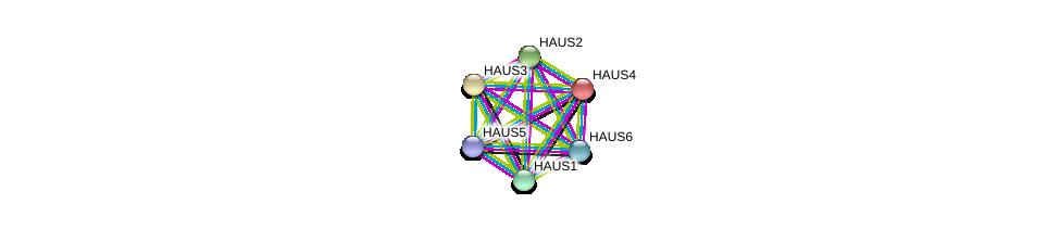 http://string-db.org/version_10/api/image/networkList?limit=0&targetmode=proteins&caller_identity=gene_cards&network_flavor=evidence&identifiers=9606.ENSP00000243706%0d%0a9606.ENSP00000369871%0d%0a9606.ENSP00000260372%0d%0a9606.ENSP00000282058%0d%0a9606.ENSP00000206474%0d%0a9606.ENSP00000439056%0d%0a