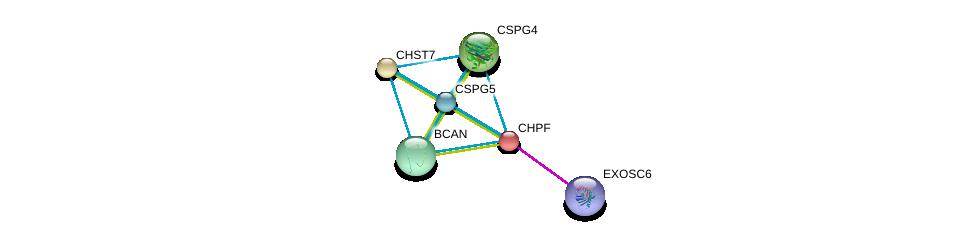 http://string-db.org/version_10/api/image/networkList?limit=0&targetmode=proteins&caller_identity=gene_cards&network_flavor=evidence&identifiers=9606.ENSP00000243776%0d%0a9606.ENSP00000398597%0d%0a9606.ENSP00000276055%0d%0a9606.ENSP00000312506%0d%0a9606.ENSP00000331210%0d%0a9606.ENSP00000373244%0d%0a