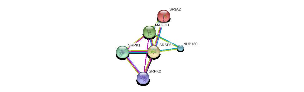 http://string-db.org/version_10/api/image/networkList?limit=0&targetmode=proteins&caller_identity=gene_cards&network_flavor=evidence&identifiers=9606.ENSP00000244020%0d%0a9606.ENSP00000360525%0d%0a9606.ENSP00000221494%0d%0a9606.ENSP00000377262%0d%0a9606.ENSP00000362931%0d%0a9606.ENSP00000367721%0d%0a