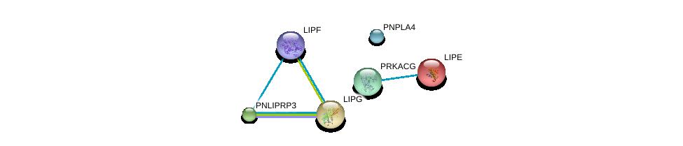 http://string-db.org/version_10/api/image/networkList?limit=0&targetmode=proteins&caller_identity=gene_cards&network_flavor=evidence&identifiers=9606.ENSP00000244289%0d%0a9606.ENSP00000370430%0d%0a9606.ENSP00000358232%0d%0a9606.ENSP00000377900%0d%0a9606.ENSP00000366488%0d%0a9606.ENSP00000261292%0d%0a